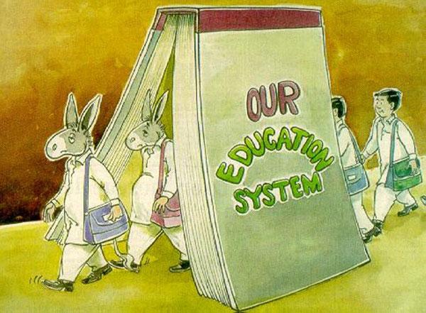 Блеск и нищета образования
